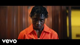 Lil Tjay – F.N (Official Video)